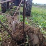 rendimientos agricolas en sancti spiritus 091046