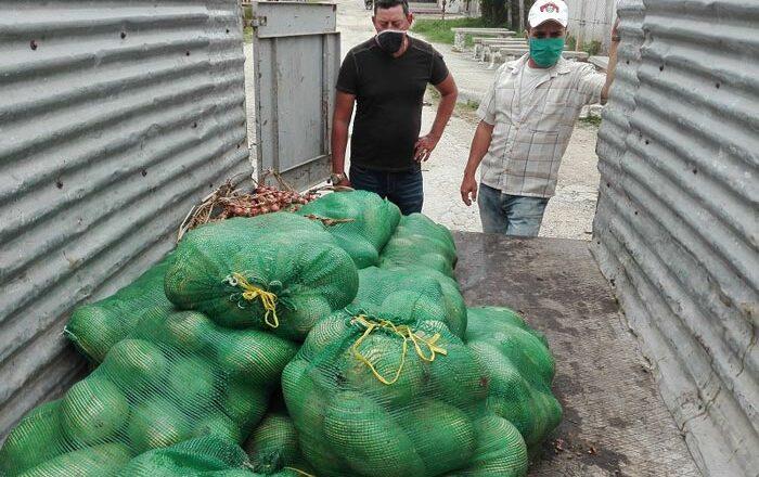 Continúa la solidaridad campesina en Cabaiguán en tiempos de pandemia