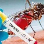 1 mosquitos.cabaiguan