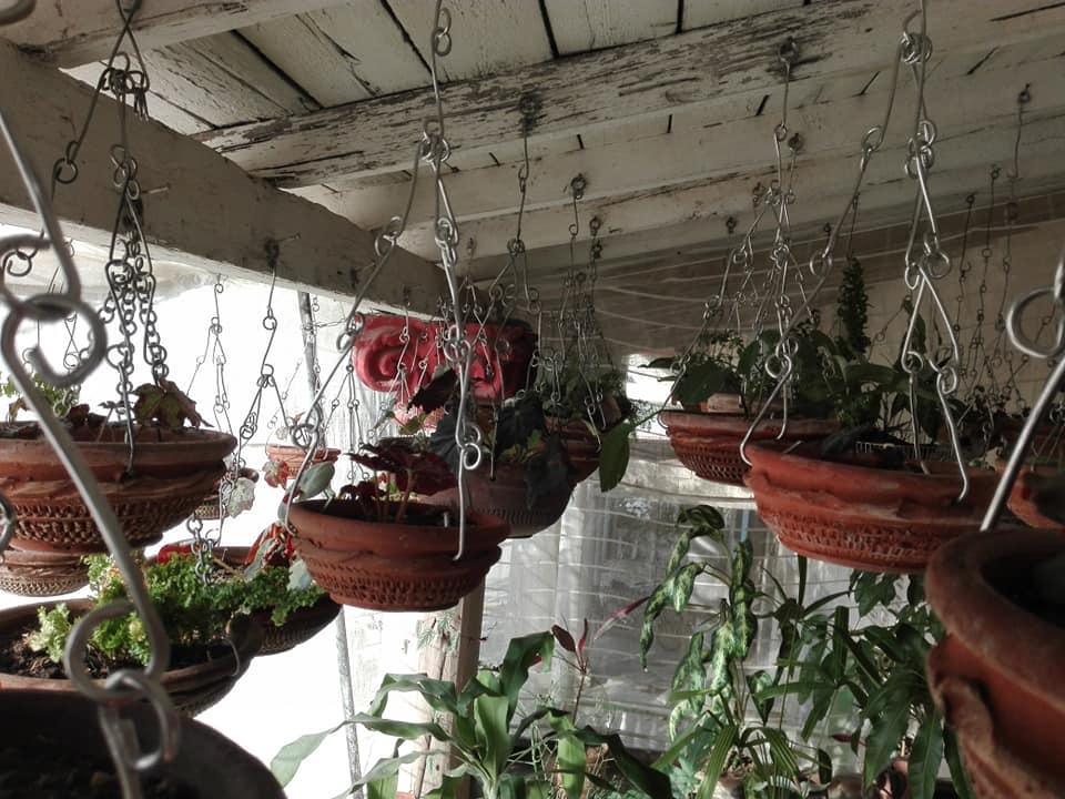 jardin colgante cabaiguan colgada