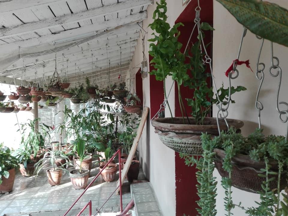 jardin colgante cabaiguan portal