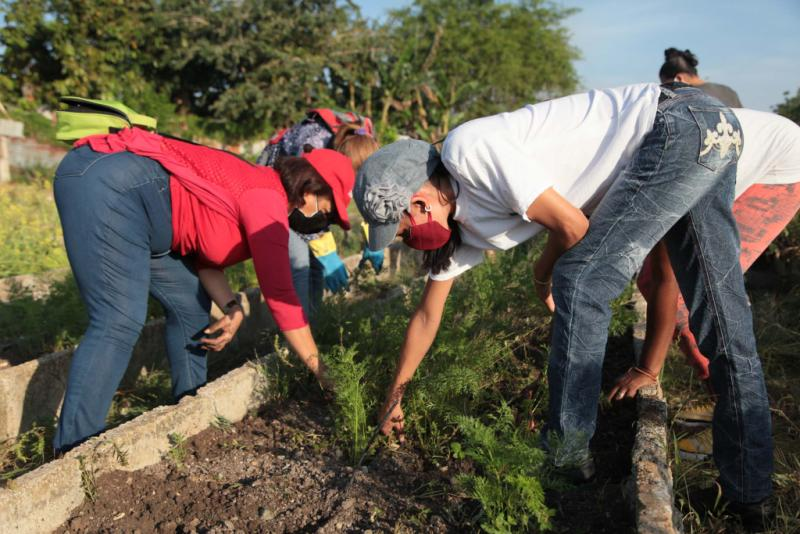 En todos los municipios de la provincia se desarrollan jornadas de trabajo voluntario en saludo a la fecha.