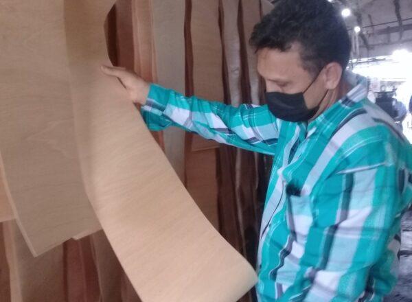 Cuentapropista de Cabaiguán se encadena con Empresa Agroforestal para bien de la exportación de tabaco