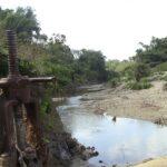 Se planta la sequía en toda la geografía de Cabaiguán