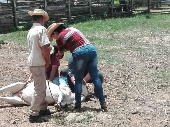 Saber hacer con sus propias manos todo lo referente a la ganadería resulta primordial para Daima. (Foto: Cortesía de la entrevistada)